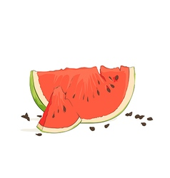 Refreshing watermelon pieces vector