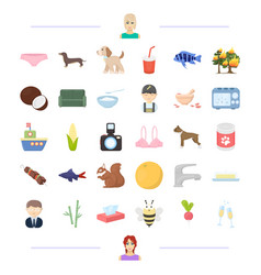 Animal food and other web icon in cartoon style vector