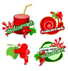 Icon red currant vector