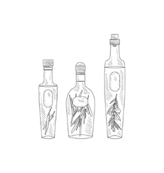 Olive oil with herbs assortment hand drawn vector
