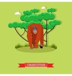 Wild orangutan in flat style vector image