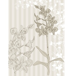 Hand drawn orchid sketch background vector