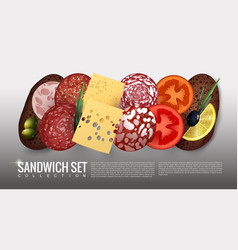realistic sandwich ingredients set vector image