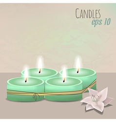 Colorful with candles set and flower vector