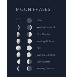 Lunar phases with flat and realistic symbols vector