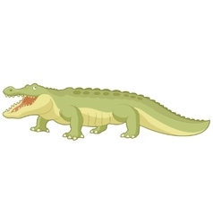 Cartoon green alligator vector image