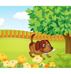 A dog and a bone vector image
