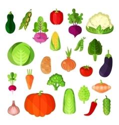 Vegetable summer harvest vegan food collection vector