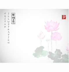 lotus flowers on white background traditional vector image vector image