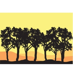 Silhouettes of tree lined vector