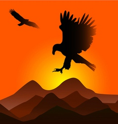 sunset with eagles vector image vector image