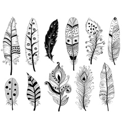 Hand drawn doodles of ethnic feathers vector