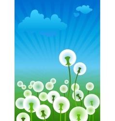 Dandelions vector