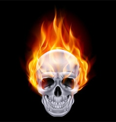 Chrome metal fair skull 01 vector image vector image