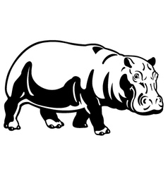 Hippopotamus black white image vector