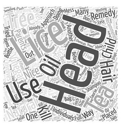Natural remedies for head lice word cloud concept vector