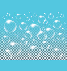 realistic isolated soap bubbles for vector image vector image