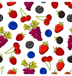 Summer fruits and berries seamless pattern vector image