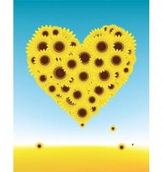 sunflower heart vector image