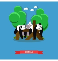 Zoo concept banner two panda bears taking a rest vector