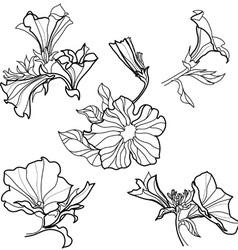 Bell flowers design elements vector