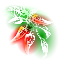 With Peppers vector image