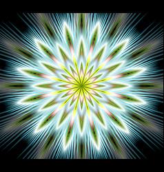 Fantasy flower mandala closeup in fractal vector