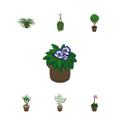 Isometric houseplant set of blossom grower vector