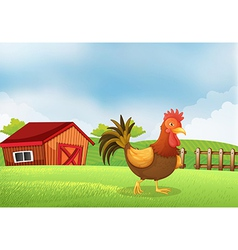 A rooster in the farm with a wooden house at the vector