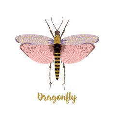 Card with beautiful dragonfly vector