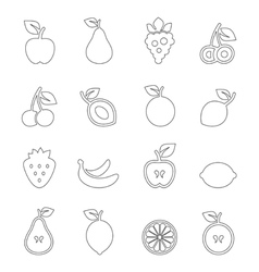 Fruit outline vector image