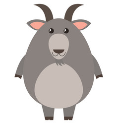 gray goat with happy face vector image
