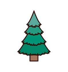Green christmas tree with trunk vector