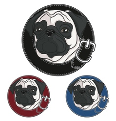Color image of a pug wearing a collar vector