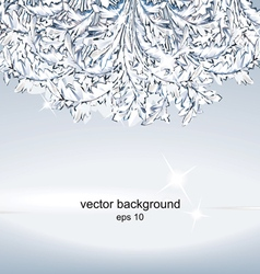 Crystal ice background vector