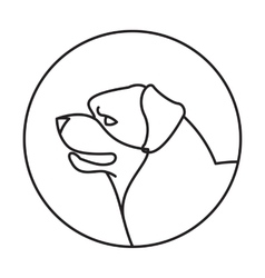 Dog head rottweiler in a linear style vector