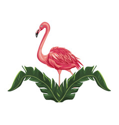 Pink flamingo icon vector