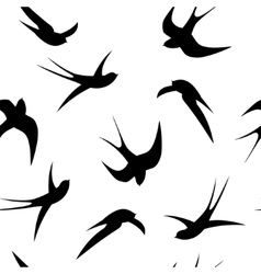 Seamless pattern swallows on a white background vector