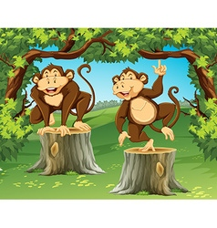 Two monkeys in the jungle vector