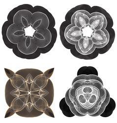 Beautiful spiral flowers vector