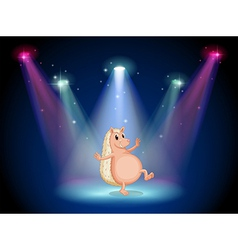 A stage with a molehog dancing vector image vector image