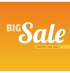 Big sale bright banner vector image vector image