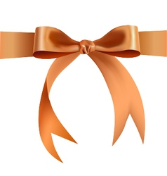 Decorative bow vector image