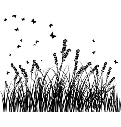 grass silhouettes background vector image vector image
