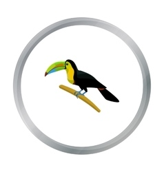 Mexican keel-billed toucan icon in cartoon style vector image vector image