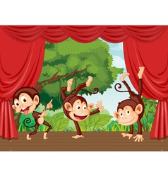 Monkeys on stage vector image