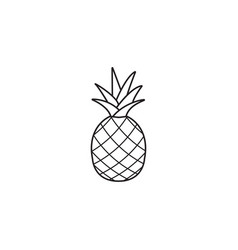 Pineapple and ananas line icon healthy fruit vector
