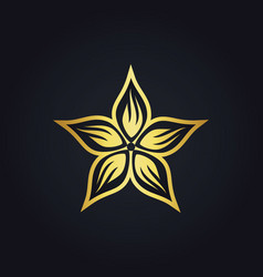 star leaf decoration gold logo vector image