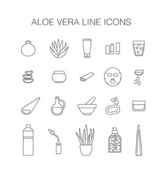 thin line icon set aloe vera plant and products vector image vector image