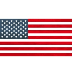 True proportions USA flag with texture vector image vector image
